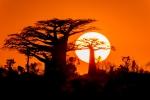 35 Madagaskar Sunset Morondava