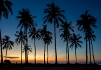 Chaungtha Beach Sunset